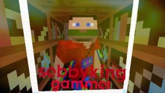Sebbykinggamerx