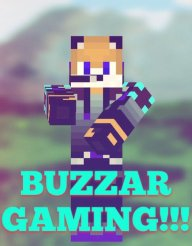 BUZZAR_BLITS39