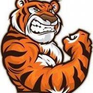 TigerProGamimg